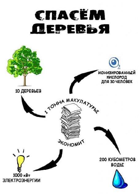 Сбор макулатуры в москве на сегодняшний день макулатура стоимость спб